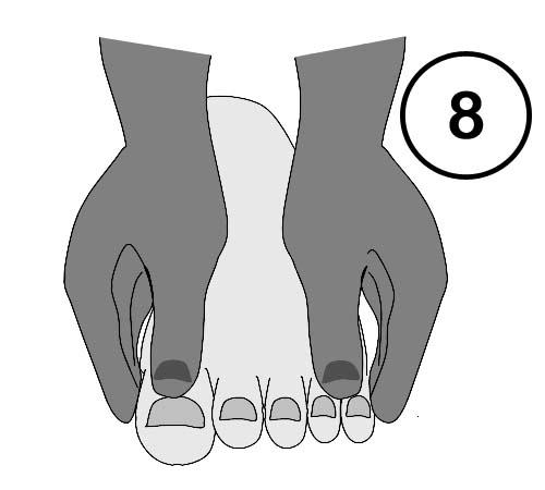 Abbildung 8